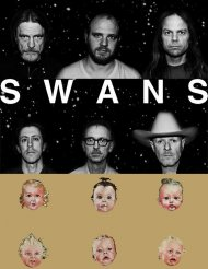Swans - confusion is sexy