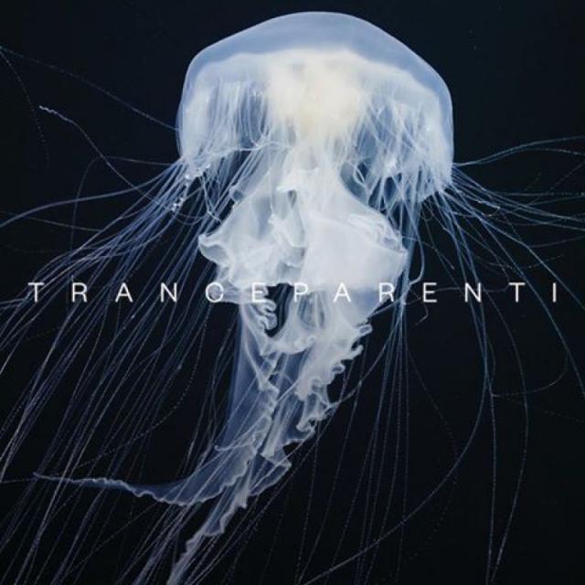 TranceParenti – immersi nel contemporaneo